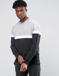 Свитшот с круглым вырезом adidas Originals Itasca AY7713 - Черный