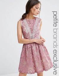 Кружевное приталенное платье без рукавов Little Mistress Petite