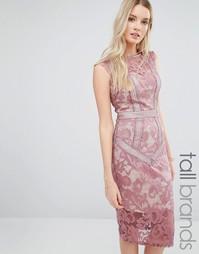 Кружевное платье‑футляр Little Mistress Tall - Mauve