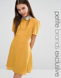 Короткое приталенное платье с воротником Fashion Union Petite Finley A