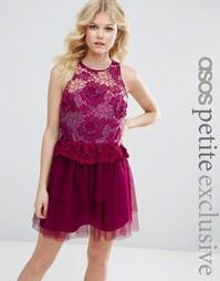Платье для выпускного с вышивкой и 3D отделкой ASOS PETITE - Ягодный