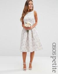 Жаккардовое платье миди для выпускного ASOS PETITE WEDDING - Мульти