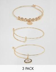 Комбинируемые браслеты ALDO Sevaedda - Золотой