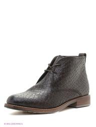 Коричневые Ботинки Tervolina