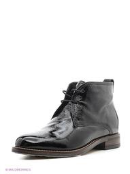 Черные Ботинки Tervolina