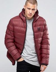 Дутая куртка с капюшоном 11 Degrees - Красный