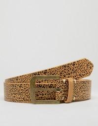 Ремень из полиуретана с леопардовым принтом D-Struct - Коричневый