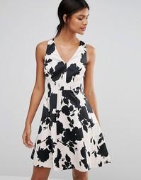 Короткое приталенное платье с принтом Coast Belize - Мульти
