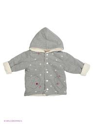 Куртки Baby Rose