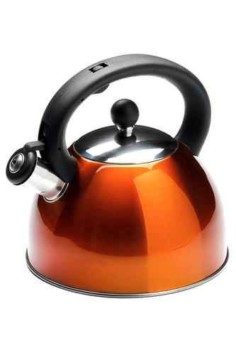 Чайник со свистком 2,7 л Mayer&Boch