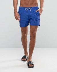 Базовые шорты для плавания Scotch and Soda - Синий