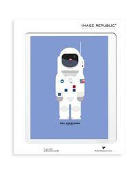 Предмет декора Image Republic