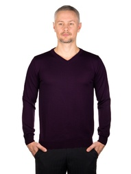 Пуловеры GREG