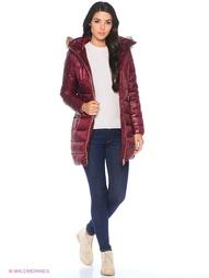 Стеганые пальто Calvin Klein