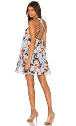Платье rose burnout - Lucy Paris