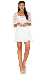 Платье jolie - Tularosa