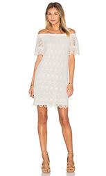 Кружевное цельнокройное платье из хлопка gustina - Velvet by Graham & Spencer