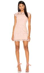 Кружевное мини платье с круглым вырезом - Endless Rose