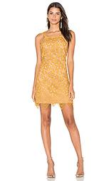 Кружевное мини-платье orleans - WAYF