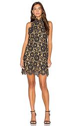 Цельнокроенное платье с кружевами - ANIMALE