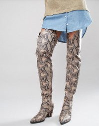 Сапоги-ботфорты на каблуке с узором под змеиную кожу Daisy Street - Мульти
