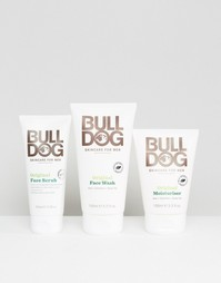 Набор средств по уходу за кожей Bulldog One Off Bundle - Скидка 30 - Мульти