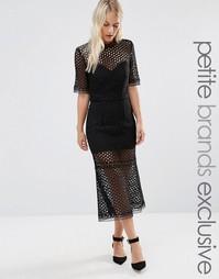 Платье миди с кружевной накладкой Jarlo Petite - Черный