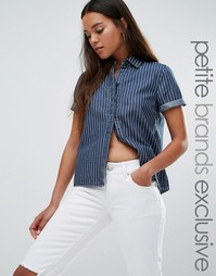 Джинсовая рубашка с полоску с короткими рукавами Noisy May Petite - Синий