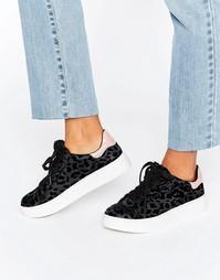 Кроссовки с леопардовым флоковым узором Blink - Черный
