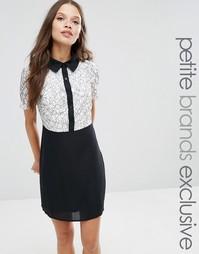 Трапециевидное платье мини 2 в 1 с контрастным кружевом Fashion Union Petite - Мульти