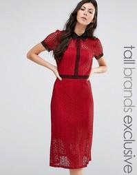 Кружевное платье миди с контрастной отделкой Fashion Union Tall - Мульти