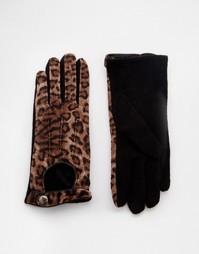 Перчатки с леопардовым принтом Pia Rossini - Коричневый