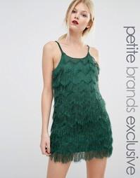 Ярусное платье мини на бретельках с отделкой бахромой True Decadence Petite - Зеленый
