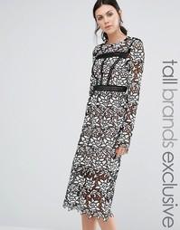 Кружевное платье миди с оборкой на подоле True Decadence Tall - Черный