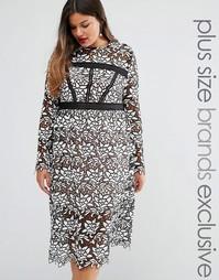 Платье-футляр премиум из цветочного кружева с длинными рукавами Truly You - Мульти