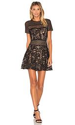 Кружевное мини-платье - BCBGMAXAZRIA