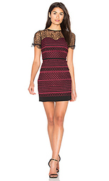 Кружевное платье heidi - Greylin