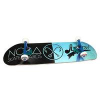 Скейтборд в сборе Nord x Mono Black/Light Blue 32.5 x 8.25 (20.9 см)