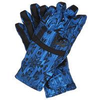 Перчатки сноубордические женские DC Seger Glove Tribal
