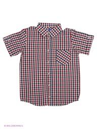 Рубашки Stilnyashka
