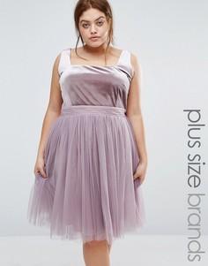 Приталенное платье с бархатным лифом и тюлевой юбкой Little Mistress Plus - Фиолетовый