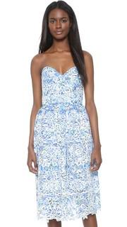 Кружевное платье Azalea Parker