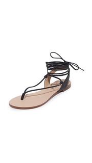 Сандалии Candee на шнуровке Splendid