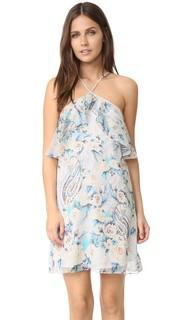Платье Ashbury Haute Hippie