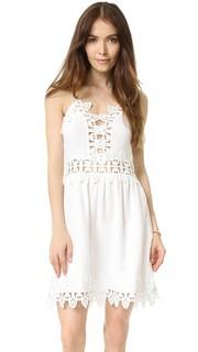 Мини-платье Tayler Saylor