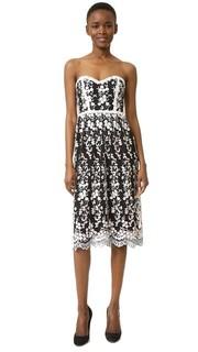 Кружевное платье Parker Black Sonny
