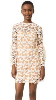 Двухцветное кружевное платье Cynthia Rowley