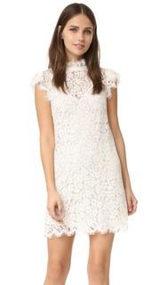 Кружевное платье с высоким вырезом Rachel Zoe