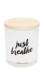 Большая свеча Just Breathe Damselfly