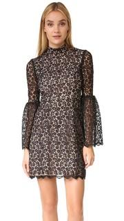 Кружевное платье с воротником под горло Jill Jill Stuart